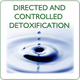 Directed and controlled Detoxification